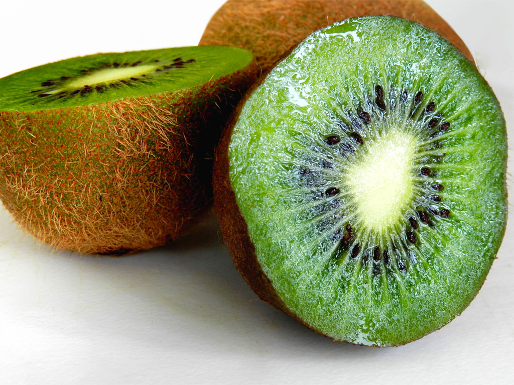 kiwi-1024x768