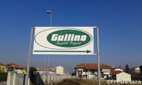 04_Gullino
