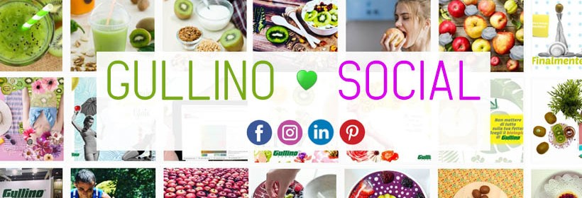 GULLINO SOCIAL COPERTINA fb
