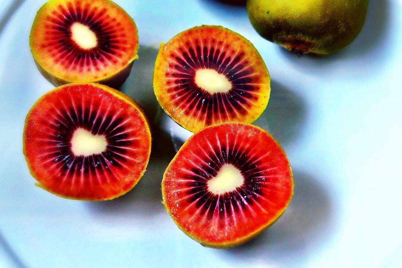 kiwi-rosso-1300x867